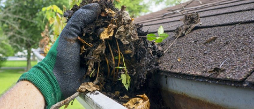 Gutter Cleaning Tips – Ins and Outs!